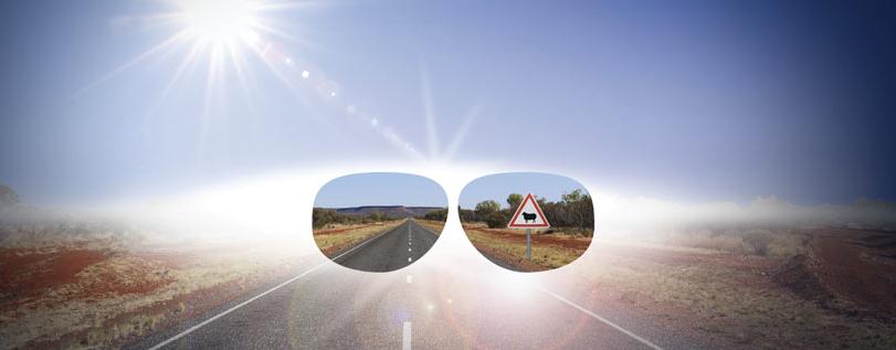 lunettes polarisées